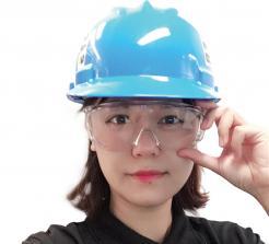 Bullard Safety Glasses SE Series SE5 Singapore